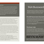 Buzzwords Pamphlet 1